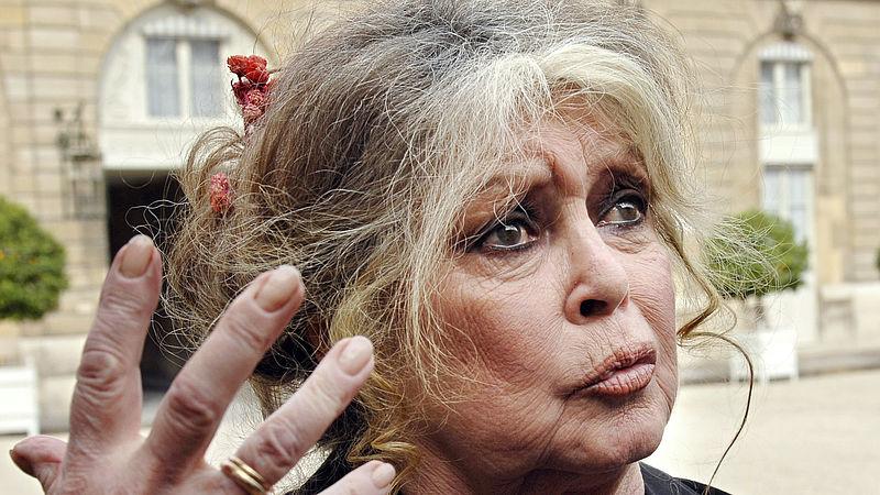 Activiste Brigitte Bardot (84) aangeklaagd om discriminerende opmerking 'ontaarde wilden'