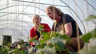 Helemaal geen gif in de landbouw: in haar pluktuin in Zwolle bewijst Joke dat het kan