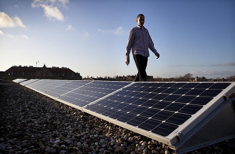 Varkentjes tussen de zonnepanelen: zijn zonneparken te combineren met landbouw?
