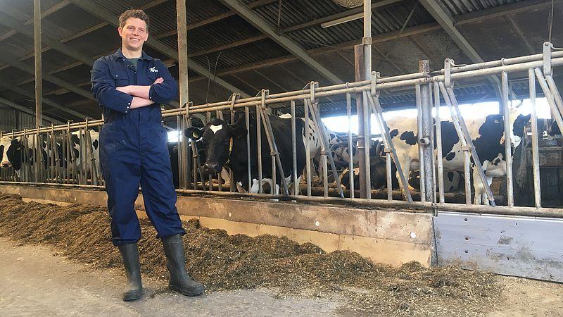 Dolf Veldhuis in zijn koeienstal
