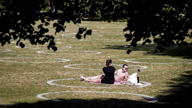 Hoe cirkels in het gras helpen nieuw gedrag aan te leren: '1,5 meter zit echt nog niet in ons systeem'