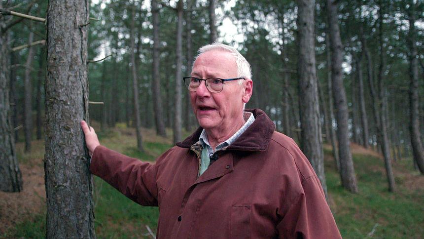 Natuur herstellen door bomen om te zagen? Omwonenden boos over beleid provincie en Staatsbosbeheer in Schoorlse duinen