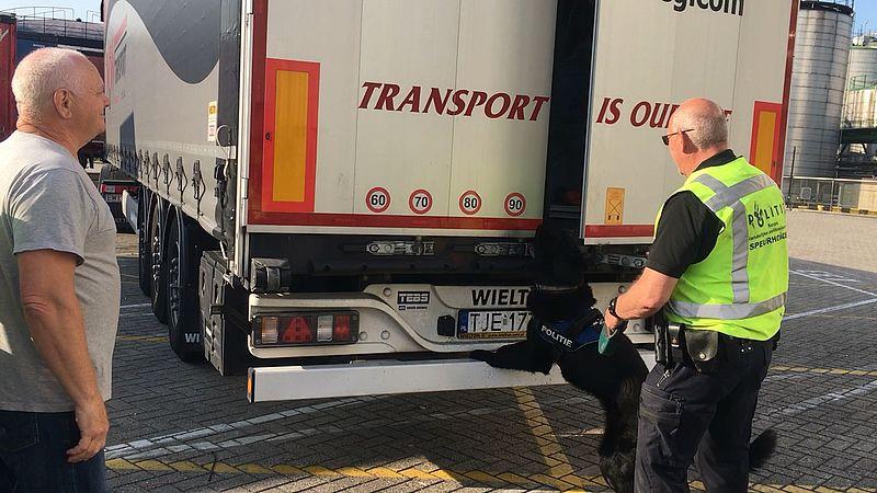 Honden controleren in een vrachtwagen in Europoort