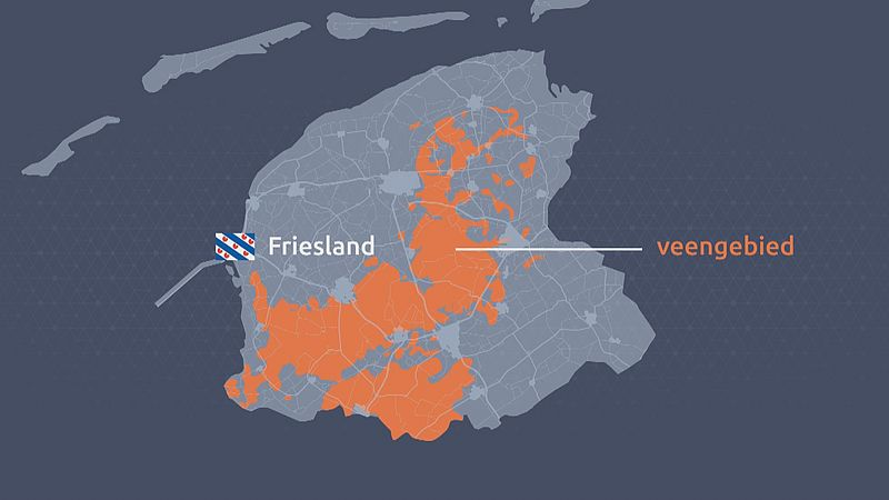 Het Friese veengebied