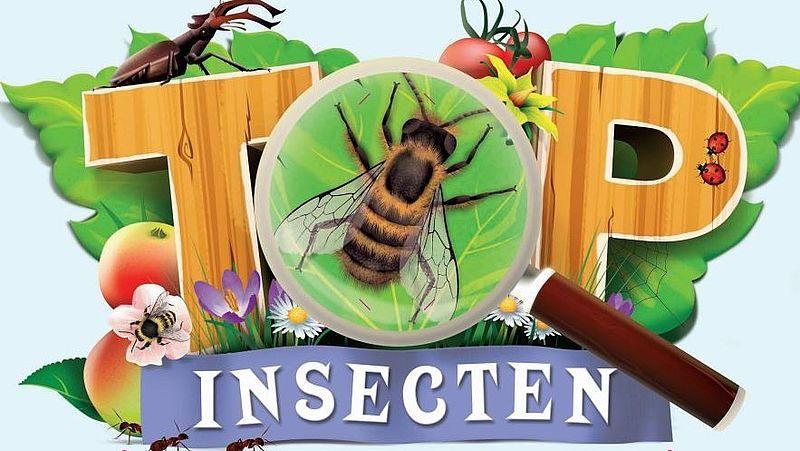 Insectentattoos Van Albert Heijn Niet Giftig Let Wel Op