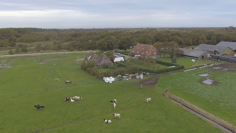 De stolpboerderij van Ludie van der Bijl met rechts zijn schuren op Schiermonnikoog