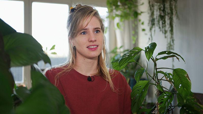 Uitgekeken op je kamerplant? Het plantenasiel vangt je groene huisdier op