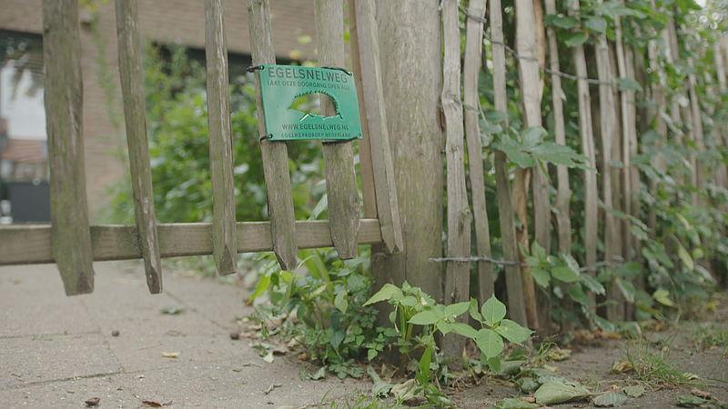 De egelsnelweg is een hooghangend tuinhek