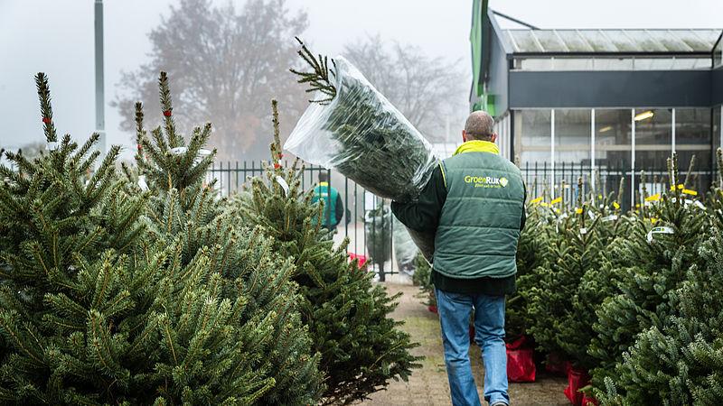 Verkoop Echte Kerstbomen Piekt Eenvandaag