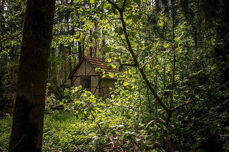 Man is gezeur van vrouw zat en gaat 10 jaar in bos wonen