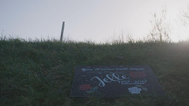 Gedenkteken langs de weg voor Jelle