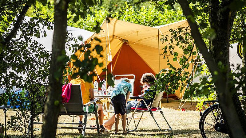 Dit is waarom een kwart van Nederland deze zomer thuis blijft