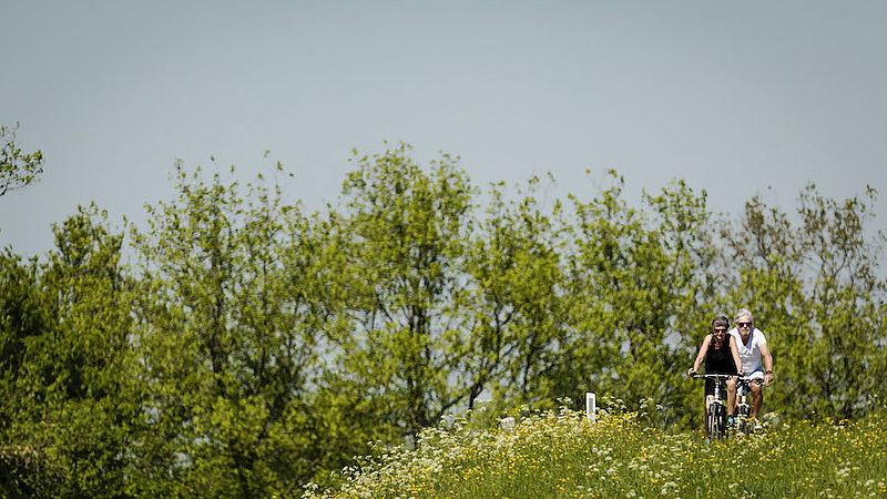 Beschermde natuur opheffen als oplossing voor stikstofcrisis kan niet, blijkt uit onderzoek
