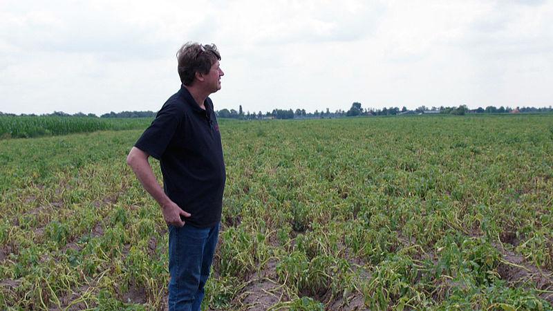 Boeren bezorgd over droogte in het oosten: 'Je weet gewoon niet waar dit eindigt'