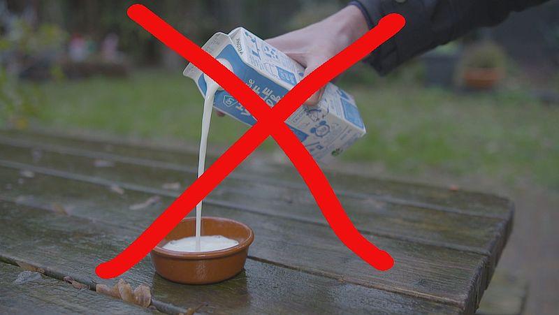 Egels worden ziek van melk