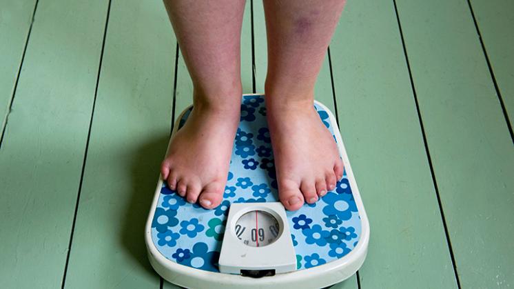 Vaker schooluitval onder kinderen met overgewicht