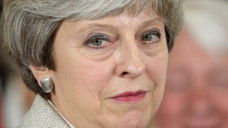 Ban op anti Theresa May lied