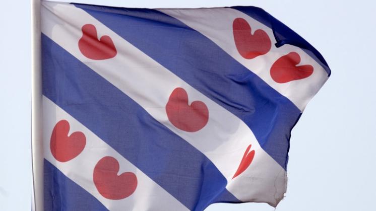 Friezen: Overheidssteun voor Friese taal goede zaak