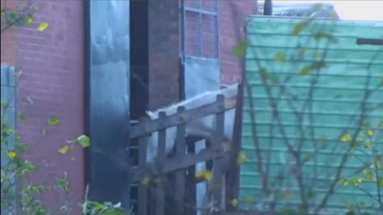 Verband tussen Selten en verdacht Brits slachthuis