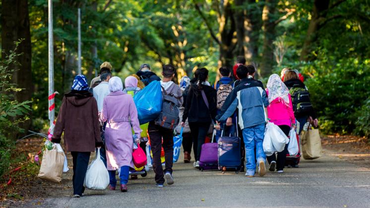 Jongeren positiever tegenover toelaten vluchtelingen